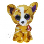Pupilki (Ty Beanie Boos): pies chihuahua Pablo 24cm